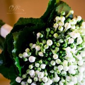 bouquet bouvardia bianco idecoration